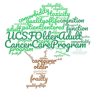 Older Adult Cancer Program